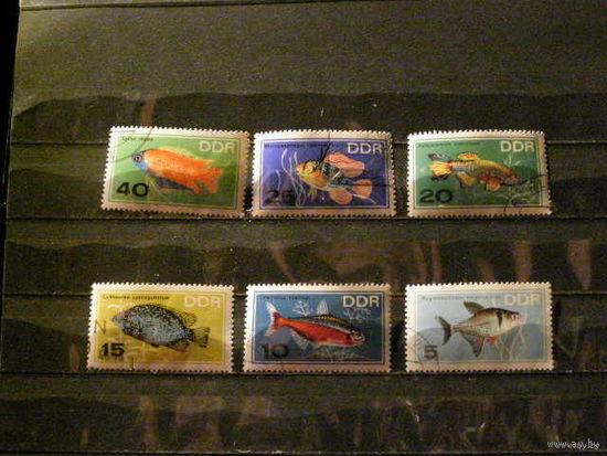 ГДР 1965 Аквариум. Рыбки.