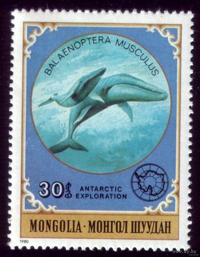 1 марка 1980 год Монголия Жители Антарктиды