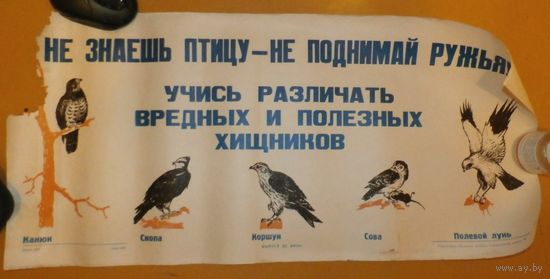 """ПЛАКАТ СССР подарок охотнику """"Не знаешь птицу-не поднимай ружья!.."""" дефект"""