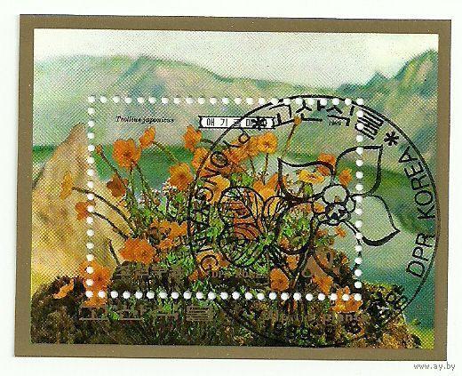 Флора. Цветы. КНДР 1989 г. (Корея) Серия + блок