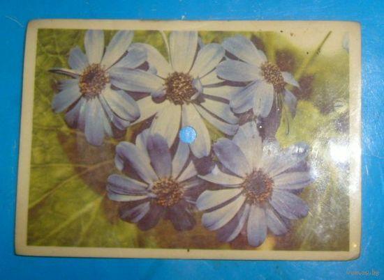 2 открытки-пластинки,СССР.