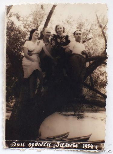 Дом отдыха ЗАЛЕСЬЕ 1954 (в Сморгонском районе Гродненской области)