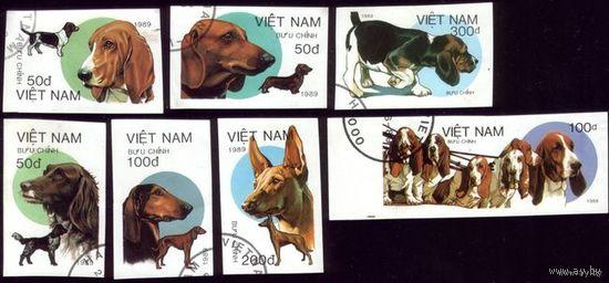 7 марок 1989 год Вьетнам Собаки Беззубцовки
