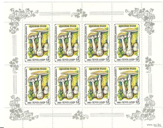 Ядовитые грибы. Малые листы 1986 негаш. флора СССР