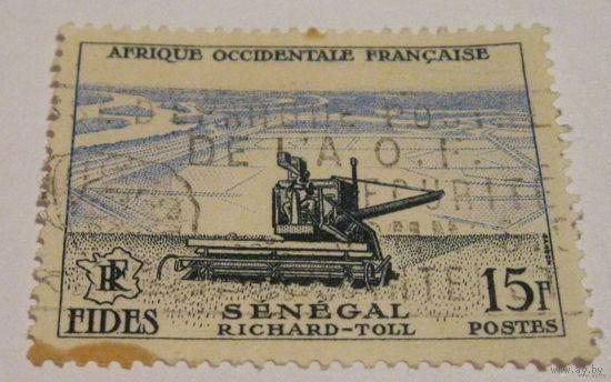 Сенегал #1