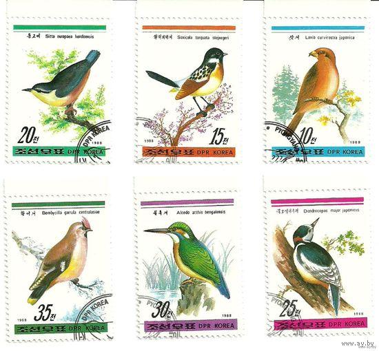 Фауна птицы КНДР 1988 г. (Корея)