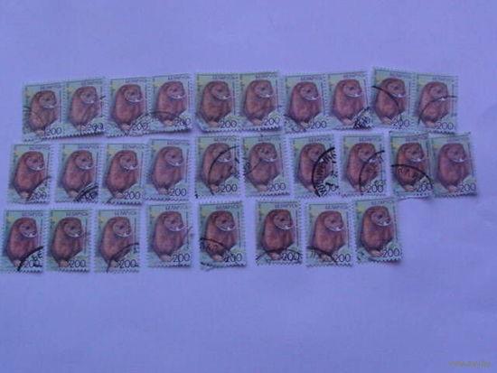 Беларусь марки 2008г Норка европейская.  распродажа