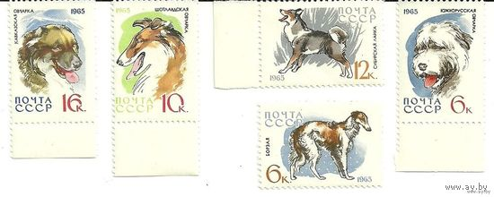 Собаки. 5 марок негаш. 1965 фауна СССР