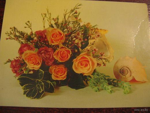 Цветы  Беларусь